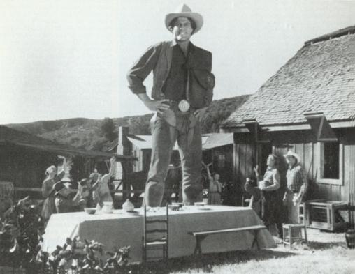 The Jolly Rancher as seen through the camera.